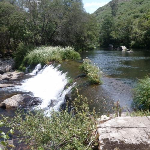 Suministro de una barrera sónica de peces ALNUS-BSP en la central de Dorna en el río Lérez (Pontevedra)